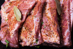 Fresh potk ribs marinated for BBQ. Fresh pork ribs, meat marinated and prepared for roast with garlic parsley allspice Royalty Free Stock Image