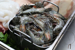 Fresh prawn Royalty Free Stock Image