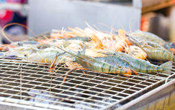 Fresh Prawn. Royalty Free Stock Image
