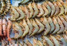 Fresh prawn Royalty Free Stock Photo