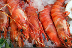 Fresh prawn lay on an ice Stock Photo