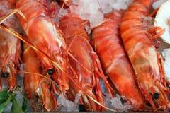 Fresh prawn lay on an ice stock photo
