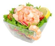 Free Fresh Prawn Salad Stock Image - 93525881