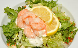 Fresh Prawn Salad Royalty Free Stock Images
