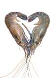 Fresh prawn or shrimp isolated on white background Stock Photography