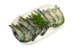 Fresh prawn on white plate, isolated Stock Photography