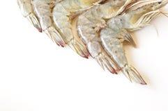 Fresh prawns. Isolated on white background Royalty Free Stock Photo