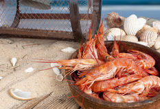 Fresh prawns on the beach Royalty Free Stock Photo