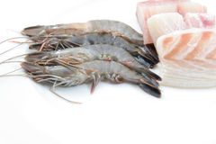 Fresh prawns and fish meat Stock Photos