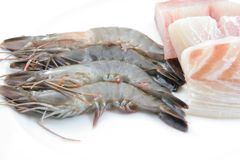 Fresh prawns and fish meat Stock Images