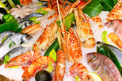 Fresh prawns and fishes. On Kythera island, Greece royalty free stock image