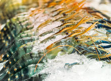 Fresh prawns on ice in seafood market Royalty Free Stock Photography