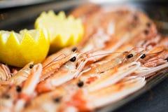 Fresh prawns Royalty Free Stock Photography