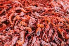 Fresh prawns seafood Royalty Free Stock Photography
