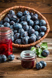 Fresh preserves from plum in the pantry Royalty Free Stock Images