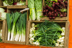 Fresh produce display at the market Royalty Free Stock Photography