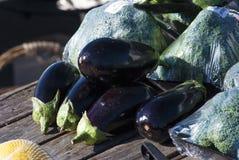 Fresh produce egg plant brocolli. Egg plants fresh raw on wooden table Stock Image