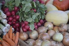 Fresh produce at farmers market in Caledonia. Fresh produce for sale at a local Farmers' Market in Caledonia,  U.S. state of Michigan Royalty Free Stock Image
