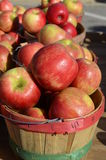 Fresh Produce For Sale Stock Photography