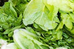 Fresh produce Royalty Free Stock Photos