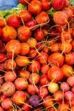 Fresh produce Royalty Free Stock Photography