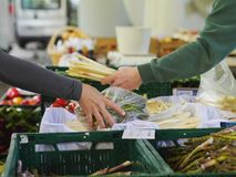 Fresh produce at the local farmer's  market. Stock Image