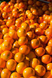 Fresh Produce Oranges Royalty Free Stock Photo