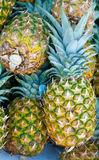 Fresh Produce Pineapple Stock Photos