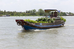 Fresh produce vendors sell from boat to boat at the Cai Rang floating market Royalty Free Stock Photo