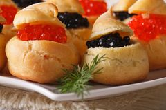 Fresh profiteroles with red and black caviar macro. Horizontal Royalty Free Stock Image