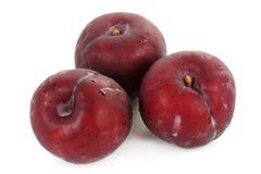 Fresh prune Stock Photos