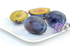 Fresh prune in white background Stock Image