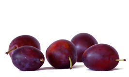 Fresh prunes Royalty Free Stock Photos