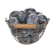 Fresh prunes Royalty Free Stock Photo