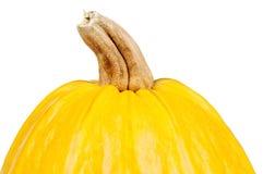 Fresh pumpkin Royalty Free Stock Images