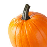 Fresh Pumpkin Royalty Free Stock Photos