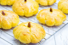 Fresh pumpkin buns on a cooling rack Stock Photos