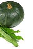 Fresh pumpkin and eryngium. Full view of fresh pumpkin and eryngium on the white background Stock Image
