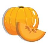 Fresh Pumpkin Fruit Royalty Free Stock Photos