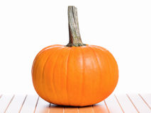 Fresh pumpkin for Halloween Royalty Free Stock Images