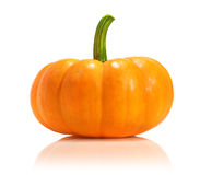 Fresh pumpkin Royalty Free Stock Photography
