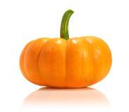 Fresh pumpkin Royalty Free Stock Photography