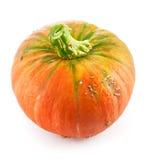 Fresh pumpkin ripe vegetable Stock Images