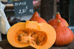 Fresh pumpkin for sale at farmers market Stock Image