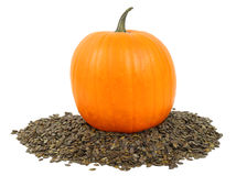 Fresh pumpkin with seeds Royalty Free Stock Image