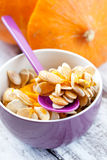 Fresh pumpkin seeds Royalty Free Stock Photos