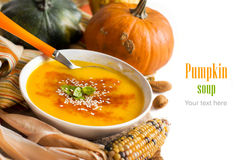 Fresh pumpkin soup with a spoon Stock Photography