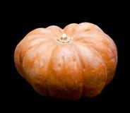 Fresh pumpkin.still life on a black background Stock Images