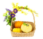 Fresh pumpkins in basket isolated on white Royalty Free Stock Photography