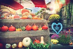Fresh pumpkins and flowers at local farmers market Stock Photos
